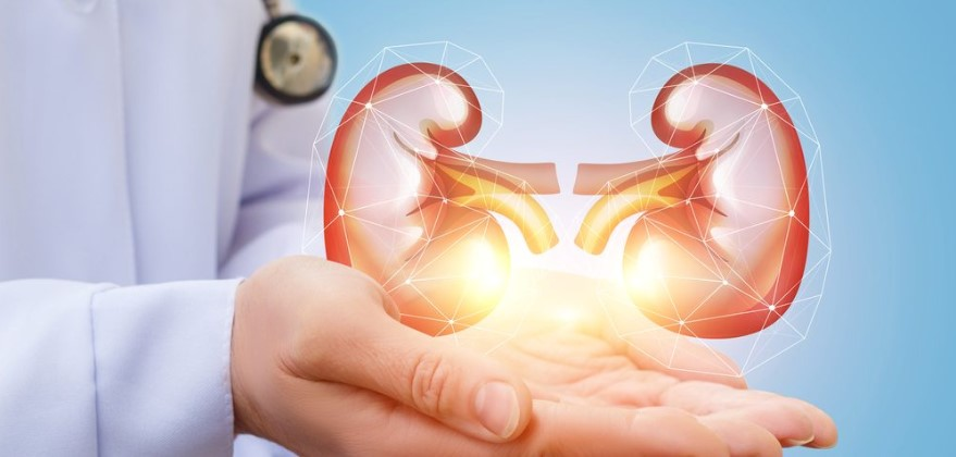 Treat Kidney Disease